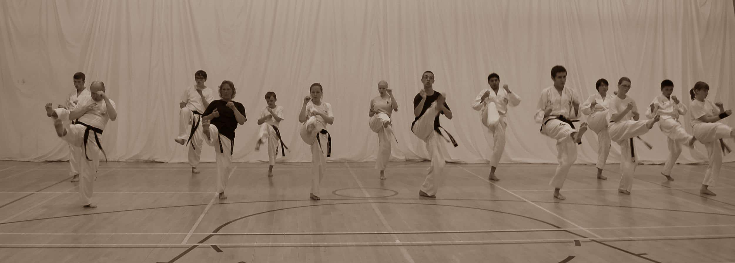 PUMA Technical TKD Day for All Students 3rd June