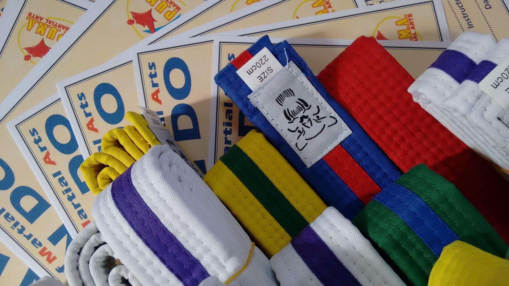 Taekwondo Grading and Belts