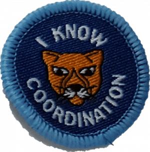 LP Coordination Badge e1509396689484