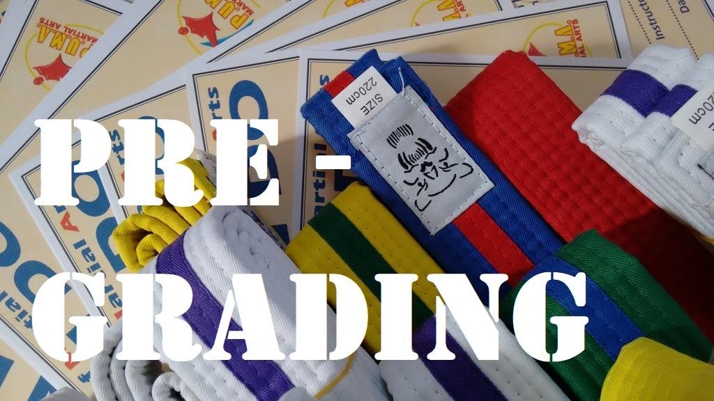 Coloured Belt Grading June 19 and Pregrading